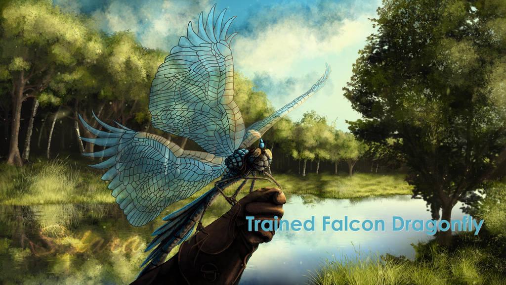 Trained Facon Dragonfly by SolaraEona
