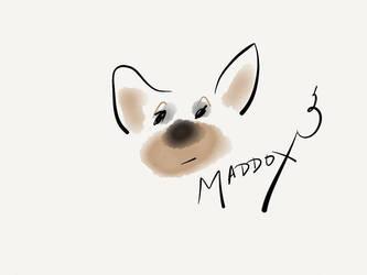 Maddox by janickg