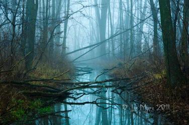 December Fog 04 by MeetMeAtTheLake2Nite
