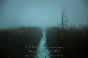 Dec Fog 005 by MeetMeAtTheLake2Nite