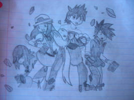 Pokedex Holders ~ Emerald Arc~ by SapphireRose-chan