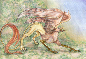 gryph by FeatherSan