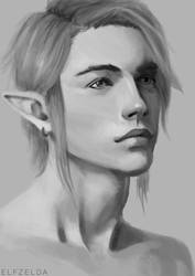 Link Portrait - Monochrome by sheiktxt