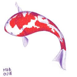 Koi fish by jujubaverde