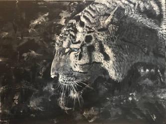 Old Tiger  by ZiokoH