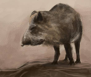 A Boar by Artofjuhani