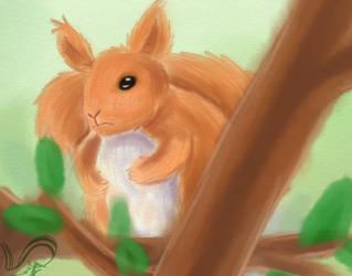 Squirrel by Fennie-Art