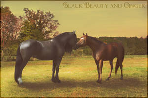 Black Beauty and Ginger by Citron--Vert