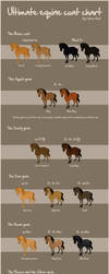 The ultimate equine coat chart by Citron--Vert