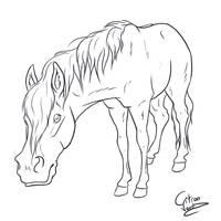 Curious horse by Citron--Vert