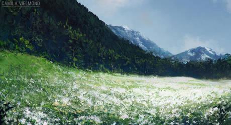 Meadow by vielmond