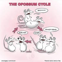 2014-06-14-Opossum-Cycle by TheMyopicProphet