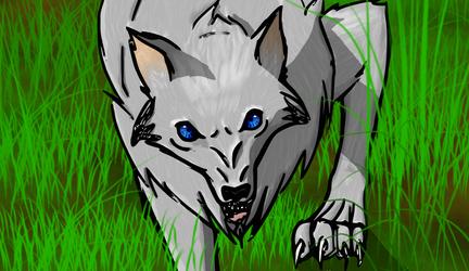 Wolf by Bonfi96