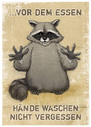 Racoon Illustration by heikoboos