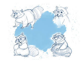 racoon sketches 01 by heikoboos