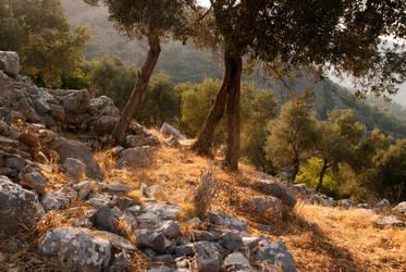 Calm Hillside by paldorslate
