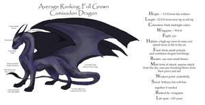 Camisadon Dragon ref sheet by DawnFrost