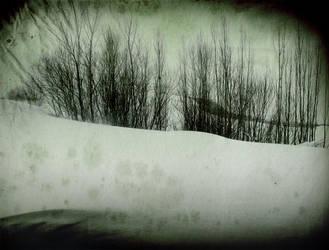 Cold by lakhmu