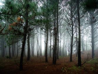 The misty Mines. by x-Bonecrusher
