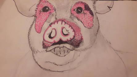 piggy  by Scyndy