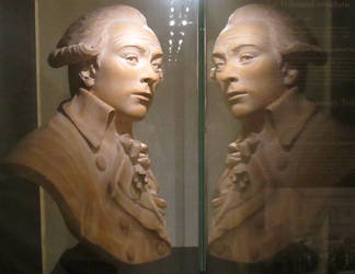 Robespierre Reflects by NuitsdeYoung