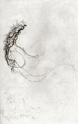 Long Gone. 102718-01 by ShaunathanBleach