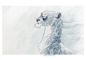 Snow leopard by SophieOTTO