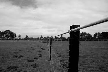 Fences set us apart by UnderlyingTruth28