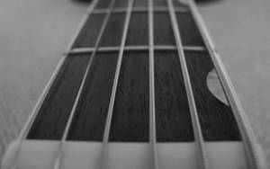 b+w guitar - 14 by fweak