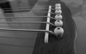 b+w guitar - 15 by fweak