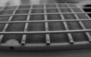 b+w guitar - 16 by fweak
