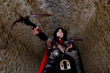 Diablo 3: Demon Hunter by MorganaBlackwings