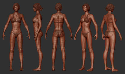 Female Basemesh for Zbrush by Tit-For-Tat