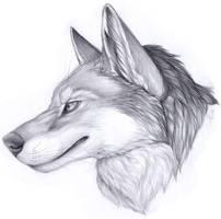 Guild Meet Canine by Korrok