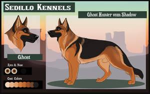 Ghost Hunter vom Shadow by Sedillo-Kennels