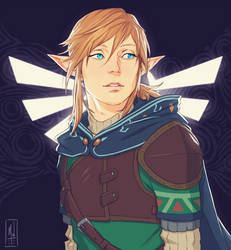 Link by Merwild