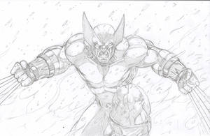 WOLVERINE 2010 by 1314