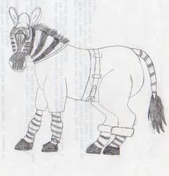Zebra Boy by Ananisapta