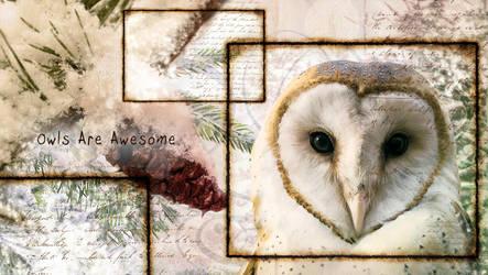 Owl-wallpaper by Hallucination-Walker