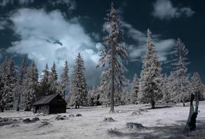 'extinction' - infrared by Konczey-Zsolt
