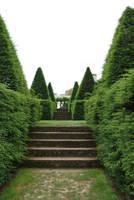 topiary5 by objekt-stock