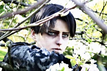 LEVI ACKERMAN - Cosplay - Testshot by Shinkan-Seto