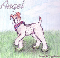 Angel by RoseSagae