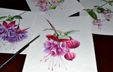 Watercolor fuchsia 2 by Rustamova