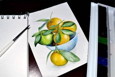 Watercolor tangerines by Rustamova