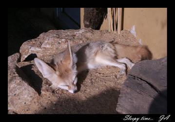 fennec fox 4 - sleepy time by dark-angel-11309