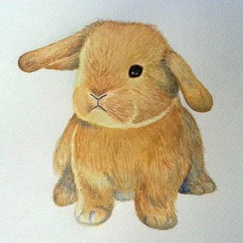 Little bunny by BlueShadowM