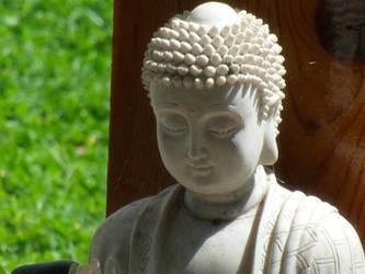Backyard Buddha by ravinniaofcreed