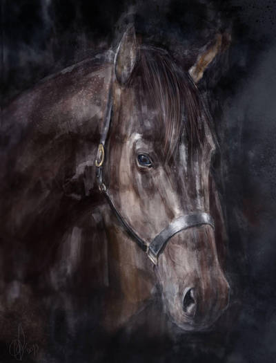 Pferd... by ElinasArt
