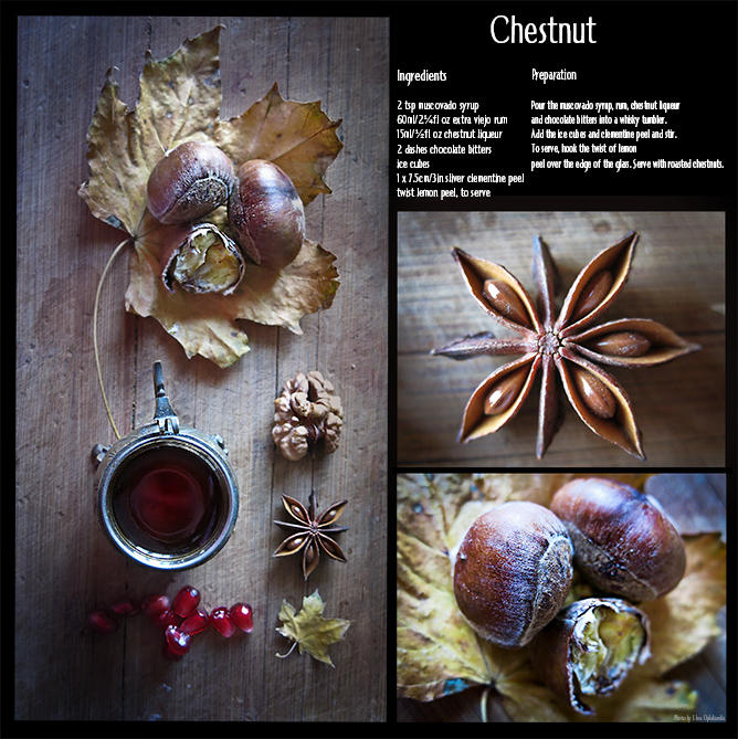 Chestnut by ElinasArt